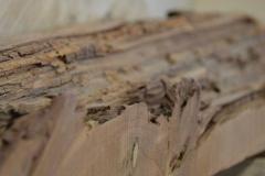 Altes-Holz-lagern